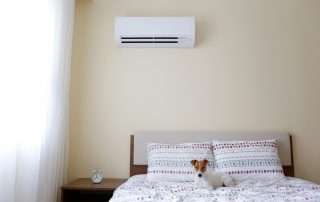 7 HVAC Tips For Pet Owners